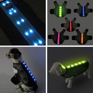 Blinkande LED lampa för hund och katt Smarta saker