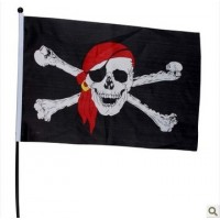 Pirate Flag 3 Sizes