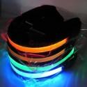 LED-lemmikkipanta