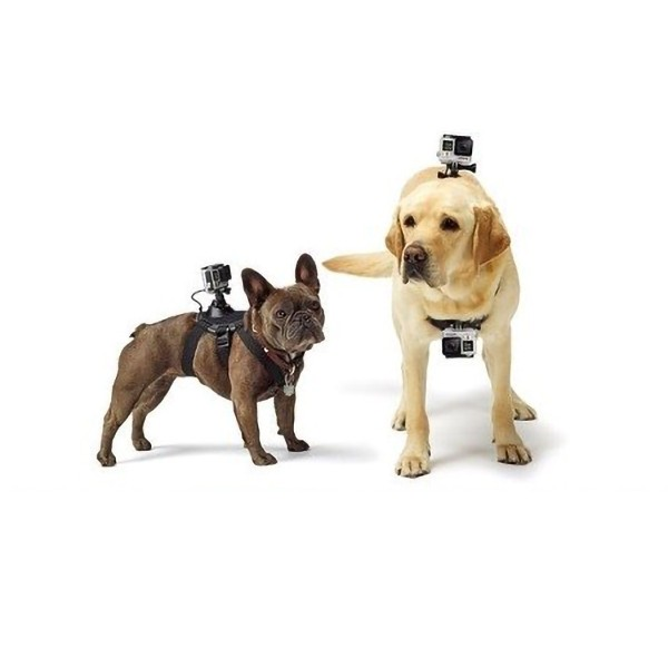 Action-kameran koiran valjaat