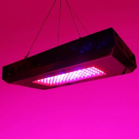 Solaris LED-kasvivalo 90W