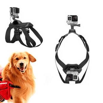 Hundsele för dubbla actionkameror