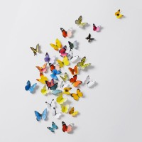 3D Stickers -Butterflies