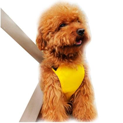 Bilbältessele för hunden