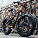 """26"""" Fatbike X-TREME XC"""