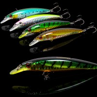 Trulinoya DW11 fishing lure