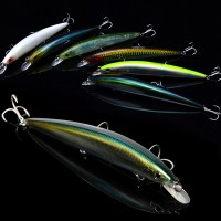 Trulinoya DW31 fishing lure