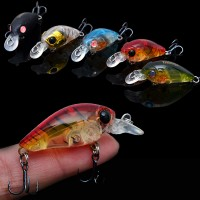 Trulinoya DW24 fishing lure