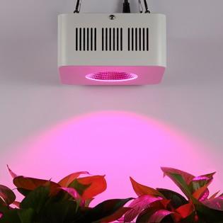 Solaris Agromax LED kasvivalo 96W