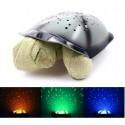 Kilpikonnayövalo