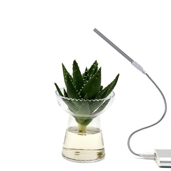 Växtlampa USB 6 W