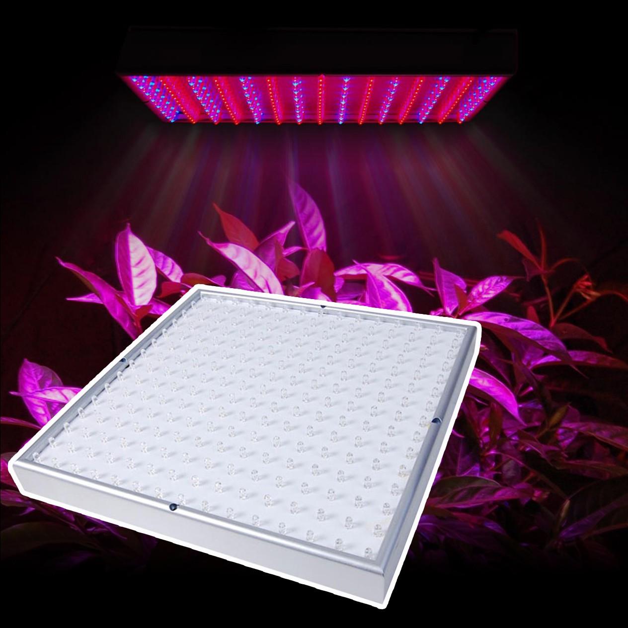 LED växtlampa
