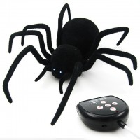 Black Widow RC-controlled Spider