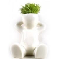 Låt små blommor eller gräs växa i denna söta gubbe.